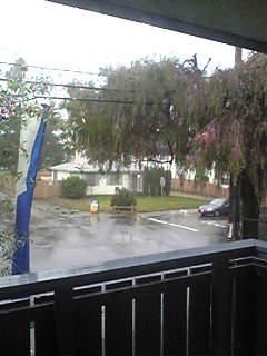 今日は土砂降り・・・。